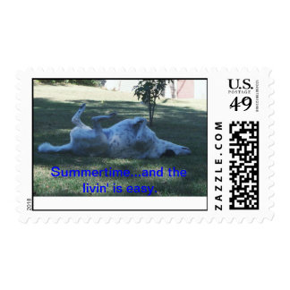 Happy Dog in summer. Postage