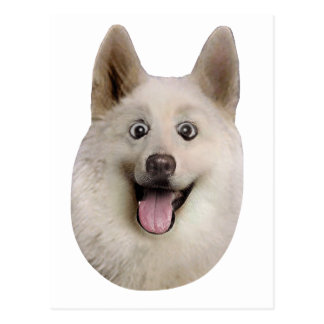 Happy_Dog_Mult_Products Tarjeta Postal