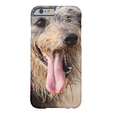 Beach Themed Happy dog on a beach barely there iPhone 6 case