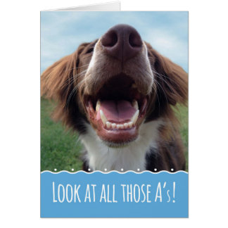 Happy Dog Report Card, Something to Smile About Card
