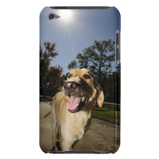 Happy dog running around exercising outdoors in iPod Case-Mate cases