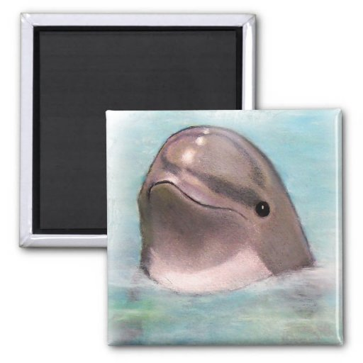 HAPPY DOLPHIN 2 INCH SQUARE MAGNET