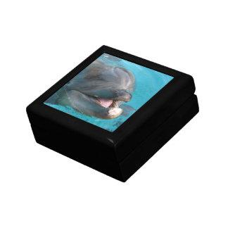 Happy Dolphin Keepsake Boxes