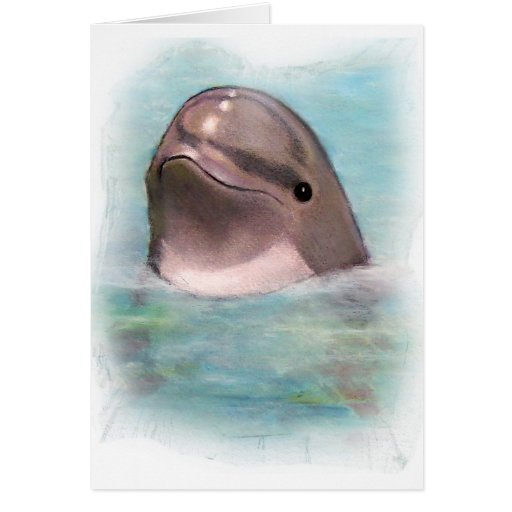 HAPPY DOLPHIN GREETING CARDS
