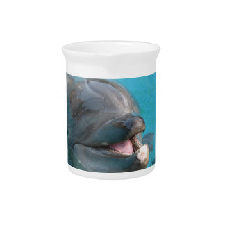 Happy Dolphin Pitcher
