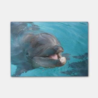 Happy Dolphin Post-it® Notes