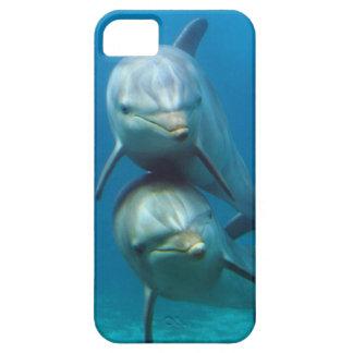 Happy Dolphins iPhone SE/5/5s Case