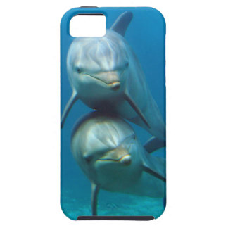 Happy Dolphins iPhone SE/5/5s Case