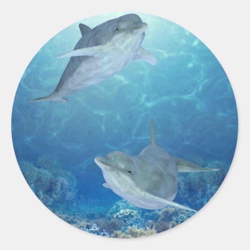 happy dolphins sticker