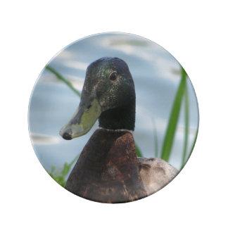 "Happy Duck - 8.5"" Decorative Plate"