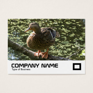 Happy Duck Business Card