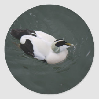 Happy Duck Classic Round Sticker