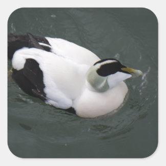 Happy Duck Square Sticker