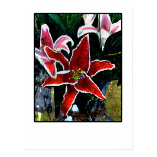 Happy Easter b Tiger Lily The MUSEUM Gifts Postcard