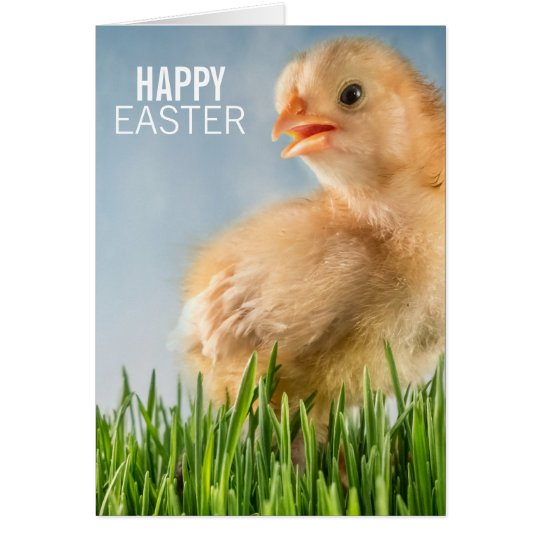 Happy Easter Baby Chick in Grass Card