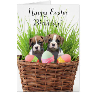 Happy Easter Birthday boxer pups card