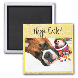 Happy Easter Boxer puppy and Chick magnet