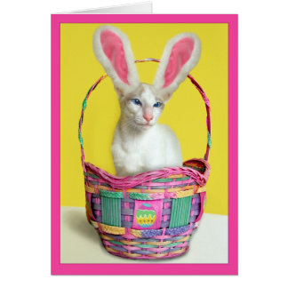 Happy Easter Bunny Cat Greeting Card