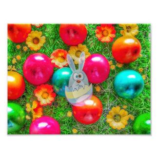 happy Easter, bunny Photo Print