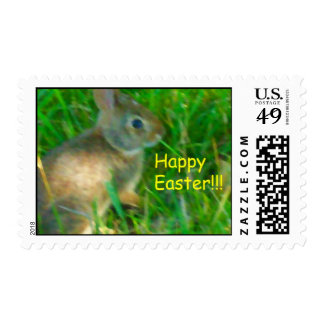Happy Easter Bunny Stamp