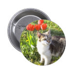 Happy Easter cat button
