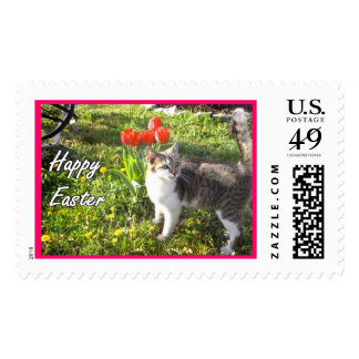 Happy Easter cat Postage Stamps