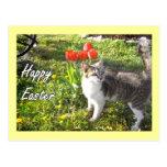 Happy Easter cat postcard