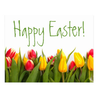Happy Easter Colorful Spring Tulips White Back Postcard