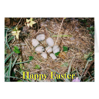 Happy Easter - Eggs Greeting Card