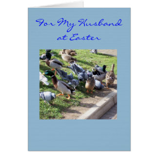 Happy Easter Husband Card - Ducks And Pigeons