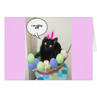 Happy Easter Kitty Card