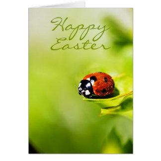 Happy Easter Ladybird On A Horthorn Bush - Spring Card