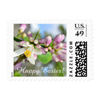Happy Easter (lemon blossoms) Postage Stamp