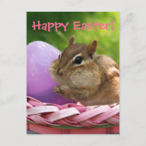 Happy Easter Little Chipmunk Holiday Postcard