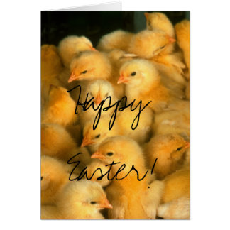 Happy Easter! Lots of Chicks Card