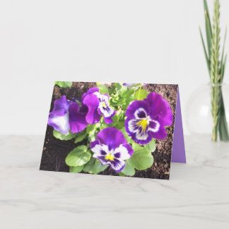 Happy Easter Pansies Holiday Card