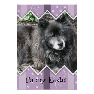 Happy Easter Photo-Paw Prints