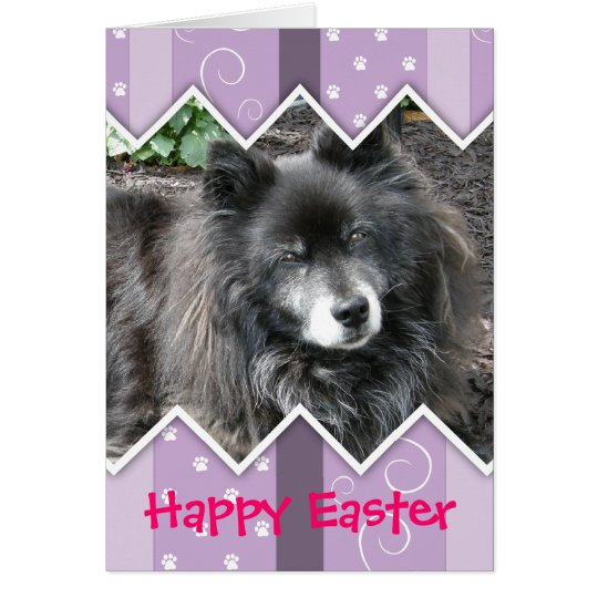 Happy Easter Photo-Paw Prints Card