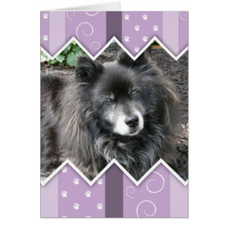 Happy Easter Photo-Paw Prints Cards