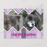 Happy Easter Photo-Paw Prints Holiday Postcard
