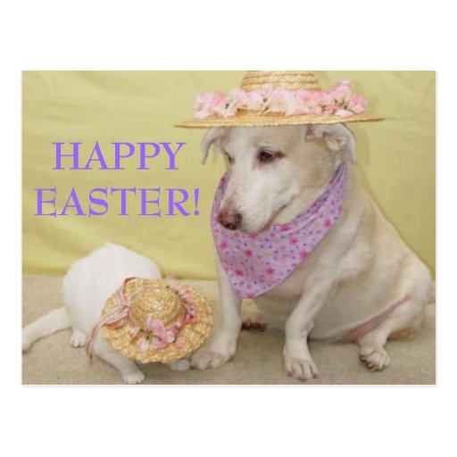 HAPPY EASTER! POST CARD