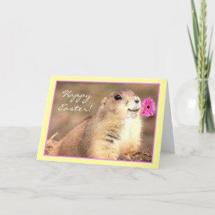 Happy prairie dog cards zazzle happy easter prairie dog greeting card m4hsunfo