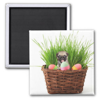 Happy Easter pug puppy 2 Inch Square Magnet