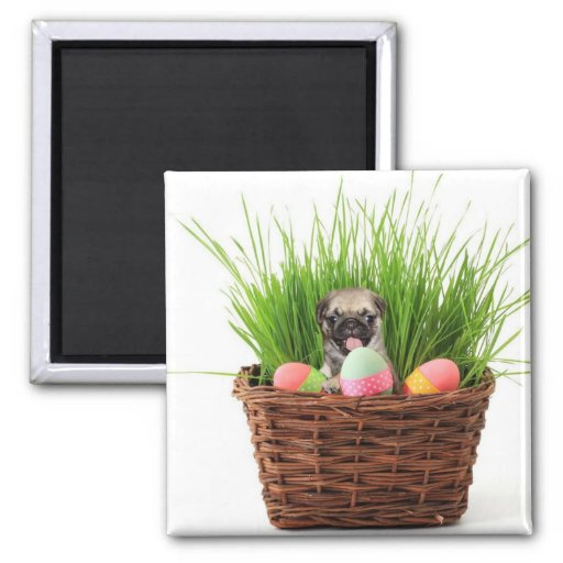 Happy Easter pug puppy Refrigerator Magnets