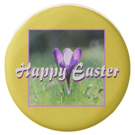 Happy Easter! Purple Crocus in spring 03.4.T Chocolate Covered Oreo