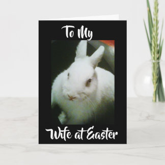 HAPPY **EASTER** to MY **WIFE** U MEAN THE WORLD Holiday Card