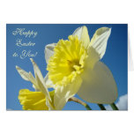 HAPPY EASTER! to You Cards Yellow Daffodils