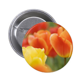 Happy Easter Tulips 2 Inch Round Button