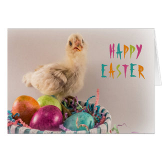 Happy Easter Yellow Baby Chick and Eggs Greeting Card