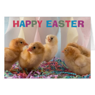 Happy Easter Yellow Baby Chicks Card